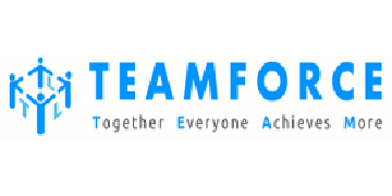 Team Force Labour LTD