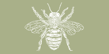 Pollination Flowers and Plants logo