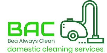 cleaner assistant