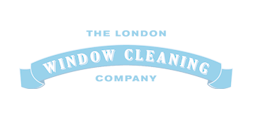 Experince window cleaner
