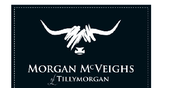 Morgan Mcveighs logo